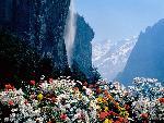 suisse Staubbach Waterfall Lauterbrunnen Switzerland jpg