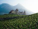 suisse Swiss Countryside jpg