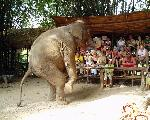 thailand thailand 115 jpg