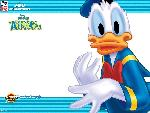 donald duck couak attack donald duck couak attack  1 jpg
