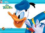 donald duck couak attack donald duck couak attack  2 jpg