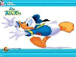 donald duck couak attack donald duck couak attack  3 jpg