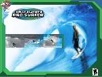 kelly slater pro surfer kelly slater pro surfer  1 jpg
