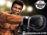 knockout kings 2 2 knockout kings 2 2 55425 jpg