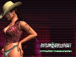 outlaw volleyball outlaw volleyball  2 jpg