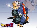Dragonball z dragonball16 8  jpg