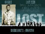 Lost 1 24768 8 jpg