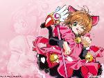 Sakura sakura8 1 24 jpg