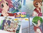 Toheart 7 jpg