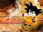dragon ball dragonball1 24x768 jpg