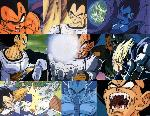 dragon ball vegeta collection jpg