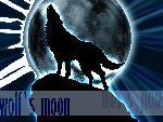 wolf s rain wolf s rain 3 jpg