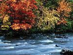 automne autumn 19 jpg