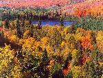 automne autumn 2 jpg
