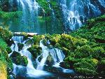 cascades cascade 4 jpg