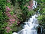 chute d eau waterfall 12 jpg