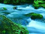 chute d eau waterfall 2 jpg
