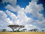 ciel skies 11 jpg
