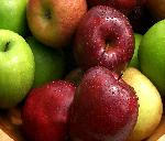 fruits fruits 17 jpg