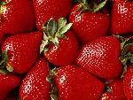 fruits fruits 3 jpg