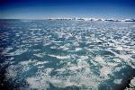 glace et icebergs P 3 3 69 JPG