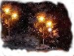 hiver celebrations winter celebrities 9 jpg