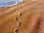 plages beaches 24 jpg