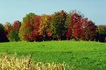 automne P 3 1785 JPG