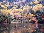 automne autumn scene 3 jpg