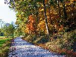 automne autumn scene 5 jpg