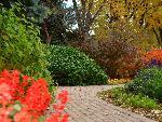 automne autumn scene 8 jpg