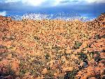 desert arizona trail csg 37 jpg