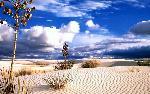 desert desert 9 jpg