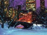 hiver Central Park in Winter New York City jpg