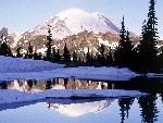 hiver Cool Reflections Tipsoo Lake Mount Rainier Washington jpg