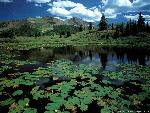lacs lacs  3 jpg