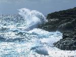 oceans oceans  7 jpg