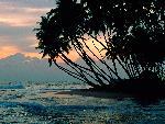 plages 1 (19) jpg