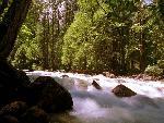 rivieres et fleuves rivieres et fleuves  8 jpg