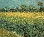 VanGogh Art gogh arles irises jpg