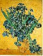 VanGogh Art gogh irises amsterdam jpg