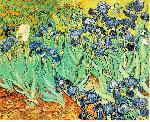 VanGogh Art gogh irises jpg