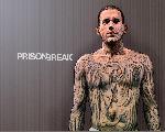 Prison Break PB Art Mic 163357 jpeg