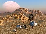 sci fi sf planet organis jpg
