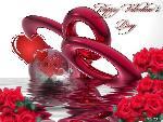 coeur saint valentin 18 jpg