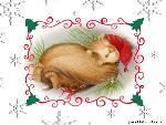 noel Christmas  3 jpg