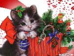 noel Christmas 11 jpg
