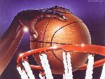 basketball basketball  7 jpg