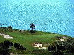 golf golf  3 jpg