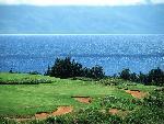 golf golf  5 jpg